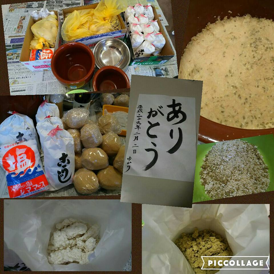 【Homemade organic miso making】