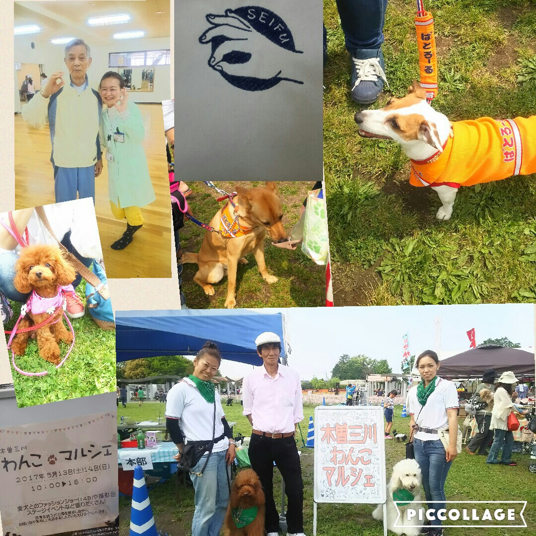 【Bijogger & Wanko Marche】 | Smile Earthは地球を笑顔にするSmile Spotです。